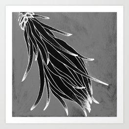 Cereus Flower Art Print
