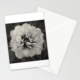 Flora series - Good Morning- Stationery Cards