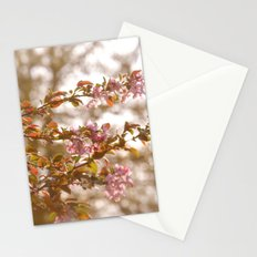 springtime  Stationery Cards