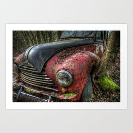 BMW tree Art Print