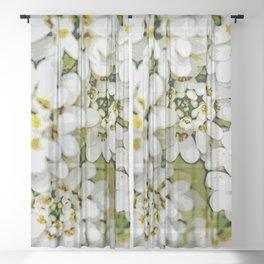 White floral splendor Sheer Curtain