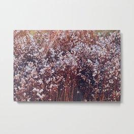 Final bloom Metal Print