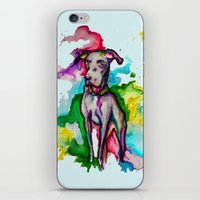 the hound iPhone & iPod Skins featuring Hound by AlysIndigo