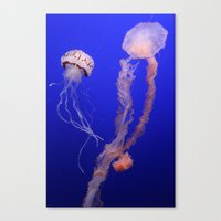 jelly fish Canvas Prints featuring jelly fish by Bunny Noir