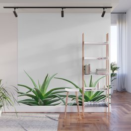 Succulents - Haworthia attenuata - Plant Lover - Botanic Specimens delivering a fresh perspective Wall Mural