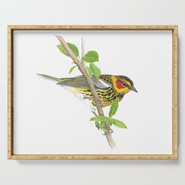 Cape May Warbler Serving Tray
