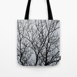 Ahollowness Tote Bag