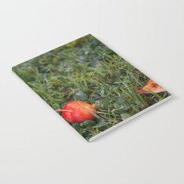 Autumn crab apple Notebook