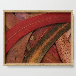 Eucalyptus Tree Leaves Serving Tray