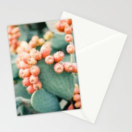 Opuntia - Ibiza - Nature photography Stationery Cards