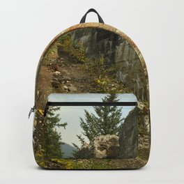 The Tipple Backpack