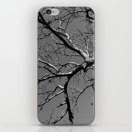 Just out of Reach iPhone Skin