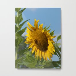 Growing Up Metal Print