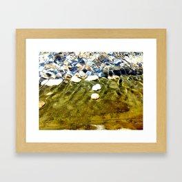 Comunidad de caracoles Framed Art Print