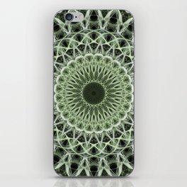 Mandala in pastel green tones iPhone Skin