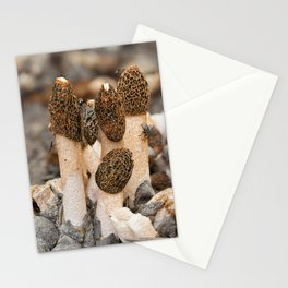 Fungi Stationery Cards