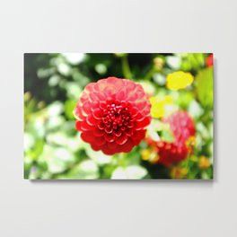 Red Yume Metal Print