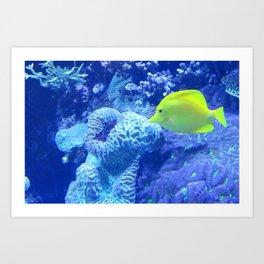 Yellow fish in the Blue Lagoon Art Print