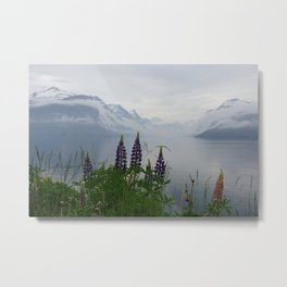 Lupine flowers with mountains landscape Metal Print