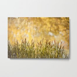 View at reeds abstract Metal Print