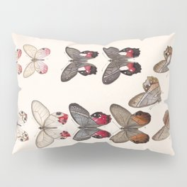 Moths And Butterfly Vintage Scientific Hand Drawn Insect Anatomy Biological Illustration Pillow Sham