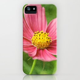Keep your face to the sunshine... iPhone Case