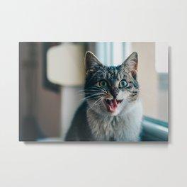 Blep Kitty Metal Print