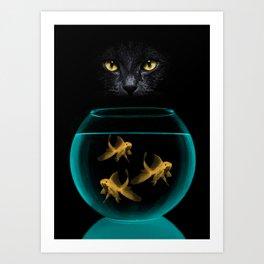 Black Cat Goldfish Art Print
