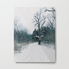 Winter park entrance Metal Print