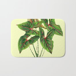 Antique Style Green-Cream Arrow Head Botanical Art Bath Mat