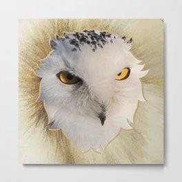 Owl head Metal Print