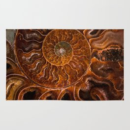 Earth treasures - brown and orange fossil Rug