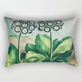 Robert John Thornton - A Group of Auriculas Rectangular Pillow