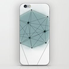 poly_ iPhone & iPod Skin