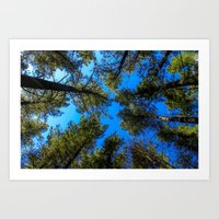 Window To The Sky Art Print