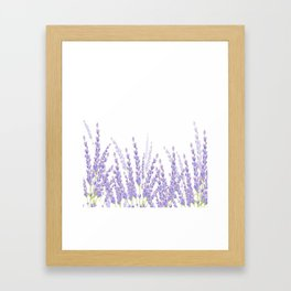 Lavender in the Field Framed Art Print