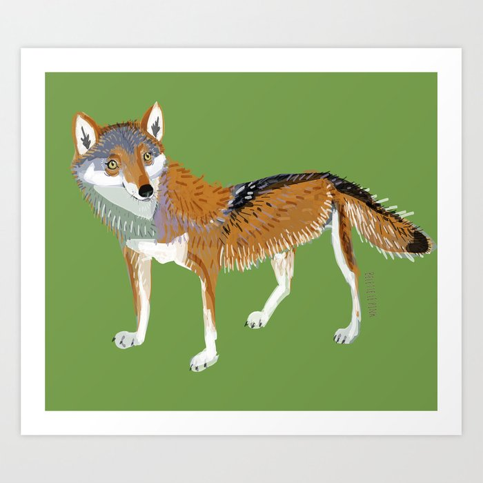 Eastern Wolf (Canis lupus lycaon) (c) 2017 Art Print