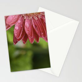 Pink Flower Petals Dripping After Rainfall Stationery Cards