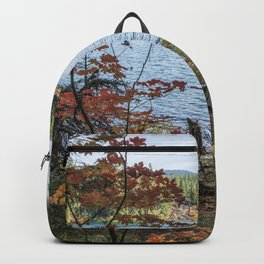 Splashes of Color Around Clear Lake Backpack