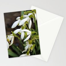 First signs of spring (snowdrops) Stationery Cards