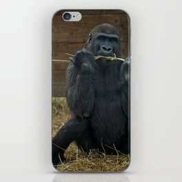 Gorilla Lope iPhone Skin