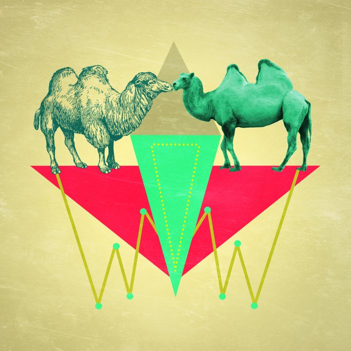 Camel Kiss Comforters