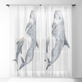 Risso´s Dolphin Sheer Curtain