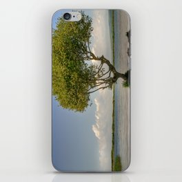 Lone Tree iPhone Skin