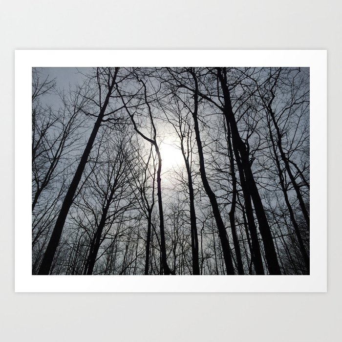 White Sky, Black Trees Art Print