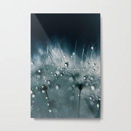 dandelion teal Metal Print