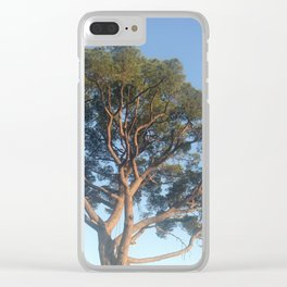 Sunset in Nice Clear iPhone Case