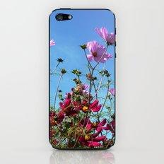 Cosmos summer sky iPhone & iPod Skin