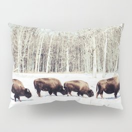 Bison Lineup Pillow Sham