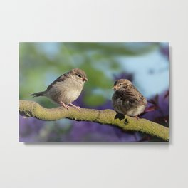 Two birds on a tree Metal Print